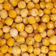 Желтый горох (семейство бобовые) фото