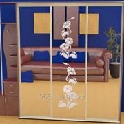 Зеркало для шкафов купе 28157 фото