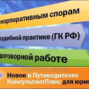 Консультант Плюс Бизнес фото