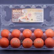 Яйцо куриное пищевое первой категории С1, пластиковый бокс 10 штук фото