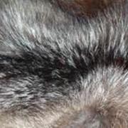Химчистка шуб и меховых изделий фото