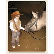 Верховая езда без седла (лечебная) фото