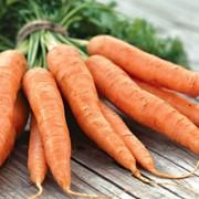 Морковь свежая, продажа, Киев фото