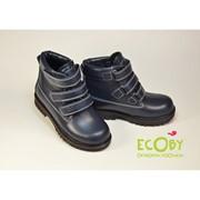 Зимові черевики ТМ Ecoby Модель: 204_1В фото