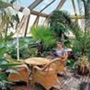 Оформление зимних садов фото