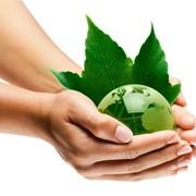 Экологическое сопровождение хозяйственной деятельности фото
