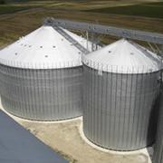 Силоса промышленные для зерна на плоском основании Гамма OS фото