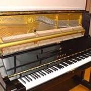 Настройка фортепиано Украина фото