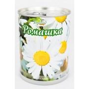 Ромашка аптечная Bontiland растение в банке, (77002) фото