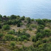 Участок 1.9 Га на Южном Берегу Крыма фото