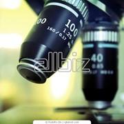 Лабораторные испытания фото