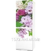 Фасад для холодильников Snaige Артикул: 027 фотография