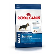 Сухой корм Royal Canin Maxi Junior фото