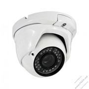 Видеокамера Partizan AHD 4960ASB фото