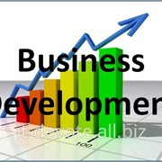 Business development фото
