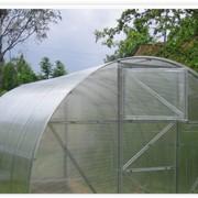 Теплица 4х6м с поликарбонатом 6мм (10-ть лет) фото