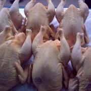 Мясо бройлеров фасованное фото
