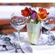 Ресторан «Джамбул» фото