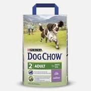Сухой корм для собак DOG CHOW ADULT LAMB 2,5 kg фото