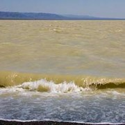 Экскурсия на озеро Жаланашколь. фото