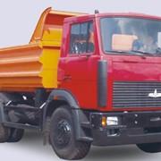 Самосвалы МАЗ 5551 (A5, 45), грузовые автомобили МАЗ, купить фото