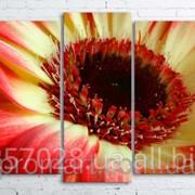 Модульна картина на полотні Червоно-жовта квітка код КМ100200(176)-097 фото