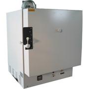 Шкаф сушильный вакуумный СНВС (Термоинжиниринг) фото