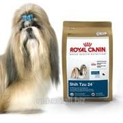 Сухой корм для собак Royal Canin Shih Tzu 24 - 1,5 кг фото