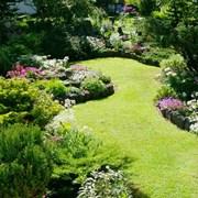 Работы по саду, огороду, даче  фото