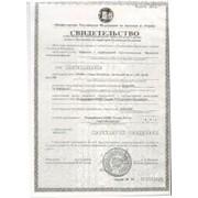Заполнение деклараций для ИП фото