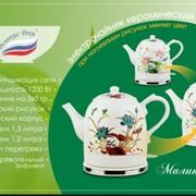 Чайник электрический Великие Реки Малиновка-6 фото
