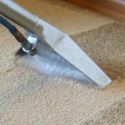 Химчистка ковров,ковровых покрытий фото