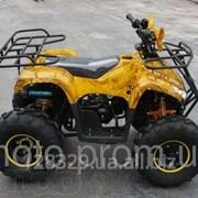 Квадроцикл АТВ 007 БМВ фото