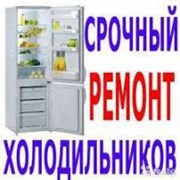 ремонт Холодильника Борисполь фото