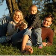 Установление отцовства и родства фото