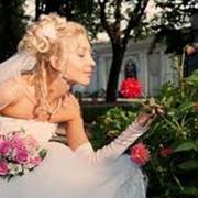 Полный комплекс свадебных услуг, Черкасы фото