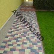 Тротуарная плитка, арт. 1 фото