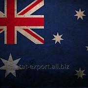 Экспорт и доставка в Австралию фото