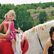 Экскурсии по территории конного клуба фото