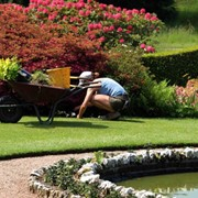 Уход за садом фото