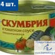"Скумбрия в томатном соусе "" 5 Морей"", 250 гр. фото"