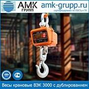 Весы крановые ВЭК 3000 (3 т) с дублированием фото