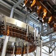 Линия розлива пенящихся напитков (пиво, квас) в ПЭТ-тару, до 1700 б/час фото