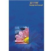 Книга учета А4, 96 л фото