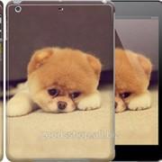 Чехол на iPad 5 Air Boo 2 890c-26 фото