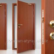 Противопожарная дверь DoorHan одностворчатая 1300х2140 мм фото