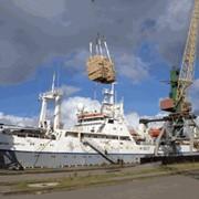 Транспортно-экспедиторское обслуживание ваших грузов в порту фото