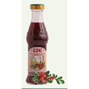Брусничный сок фото