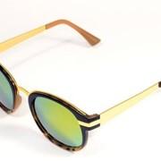 Солнцезащитные очки Advanced View Line AVL303C фото