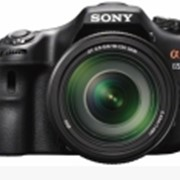 Камера SLT-A65VM фото